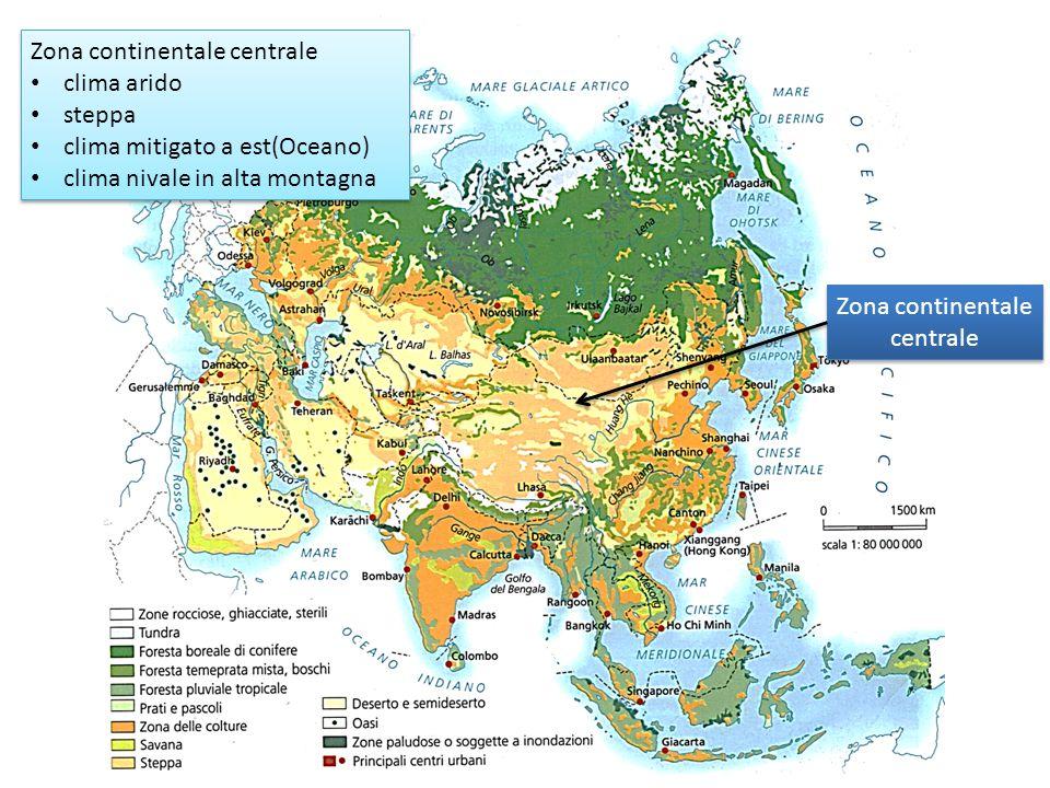 Zona continentale centrale clima arido steppa clima mitigato a est(Oceano) clima nivale in alta montagna Zona continentale centrale clima arido steppa
