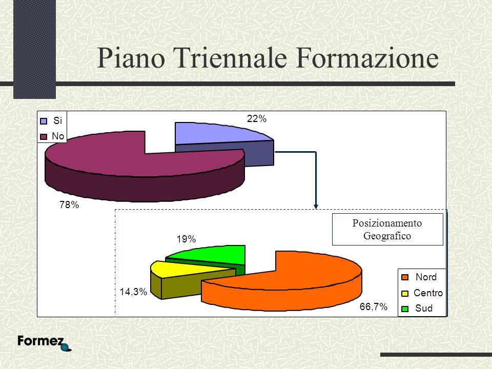 Piano Triennale Formazione 22% 78% Si No 66,7% 14,3% 19% Nord Centro Sud Posizionamento Geografico