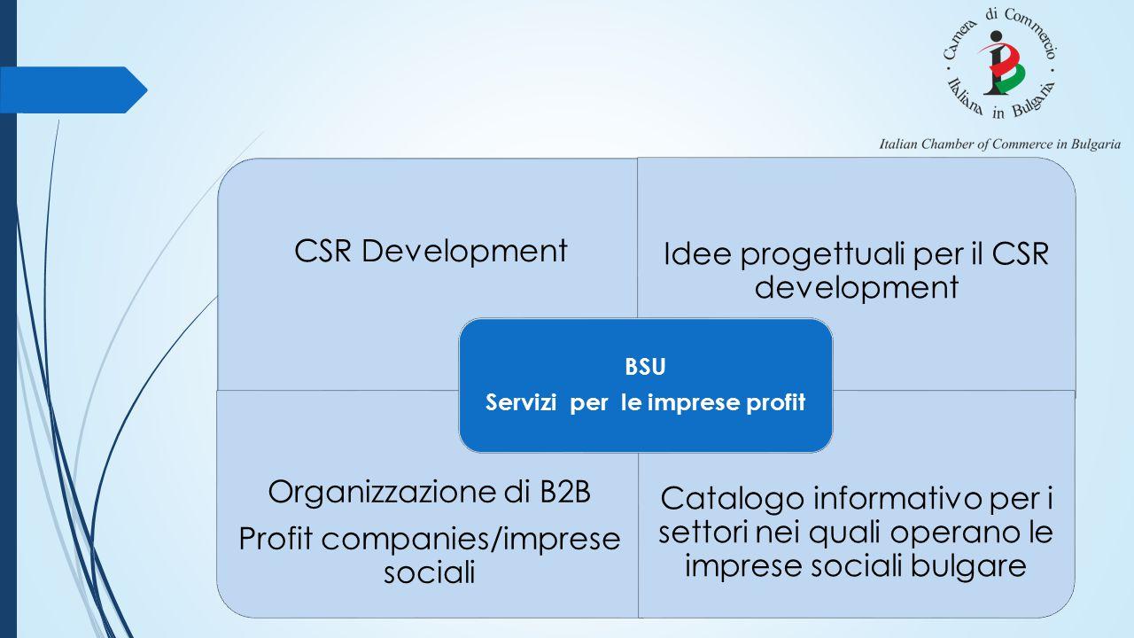 CSR Development Idee progettuali per il CSR development Organizzazione di B2B Profit companies/imprese sociali Catalogo informativo per i settori nei