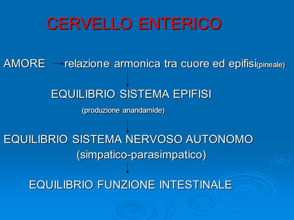 CERVELLO ENTERICO AMORE relazione armonica tra cuore ed epifisi (pineale) EQUILIBRIO SISTEMA EPIFISI EQUILIBRIO SISTEMA EPIFISI (produzione anandamide) (produzione anandamide) EQUILIBRIO SISTEMA NERVOSO AUTONOMO (simpatico-parasimpatico) (simpatico-parasimpatico) EQUILIBRIO FUNZIONE INTESTINALE EQUILIBRIO FUNZIONE INTESTINALE