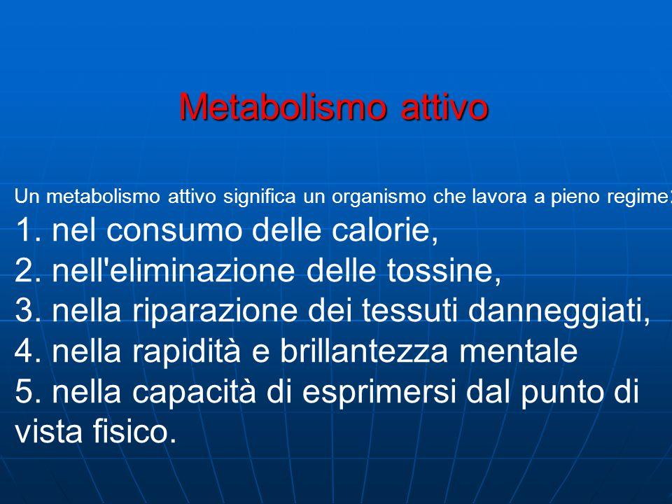 Un metabolismo attivo significa un organismo che lavora a pieno regime : 1.