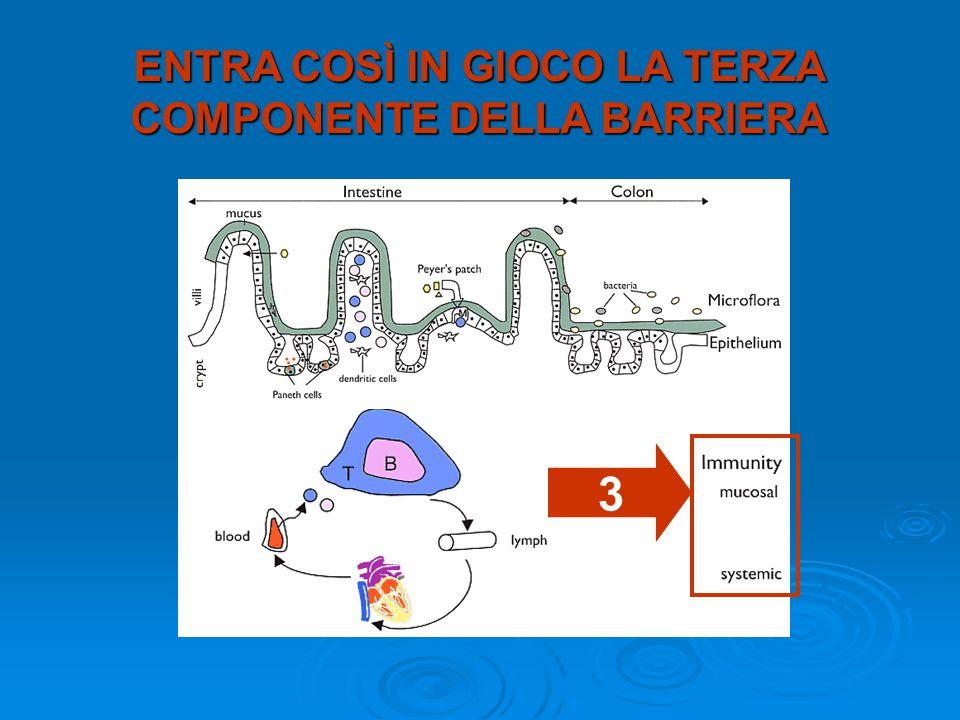 ENTRA COSÌ IN GIOCO LA TERZA COMPONENTE DELLA BARRIERA 3
