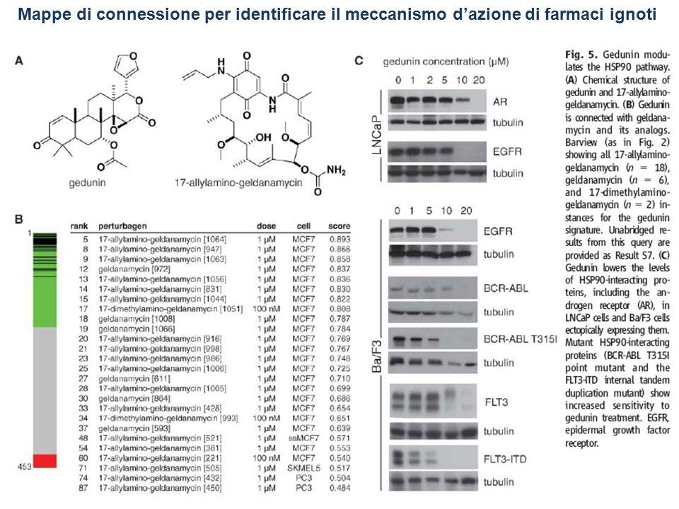 Mappe di connessione per identificare il meccanismo d'azione di farmaci ignoti