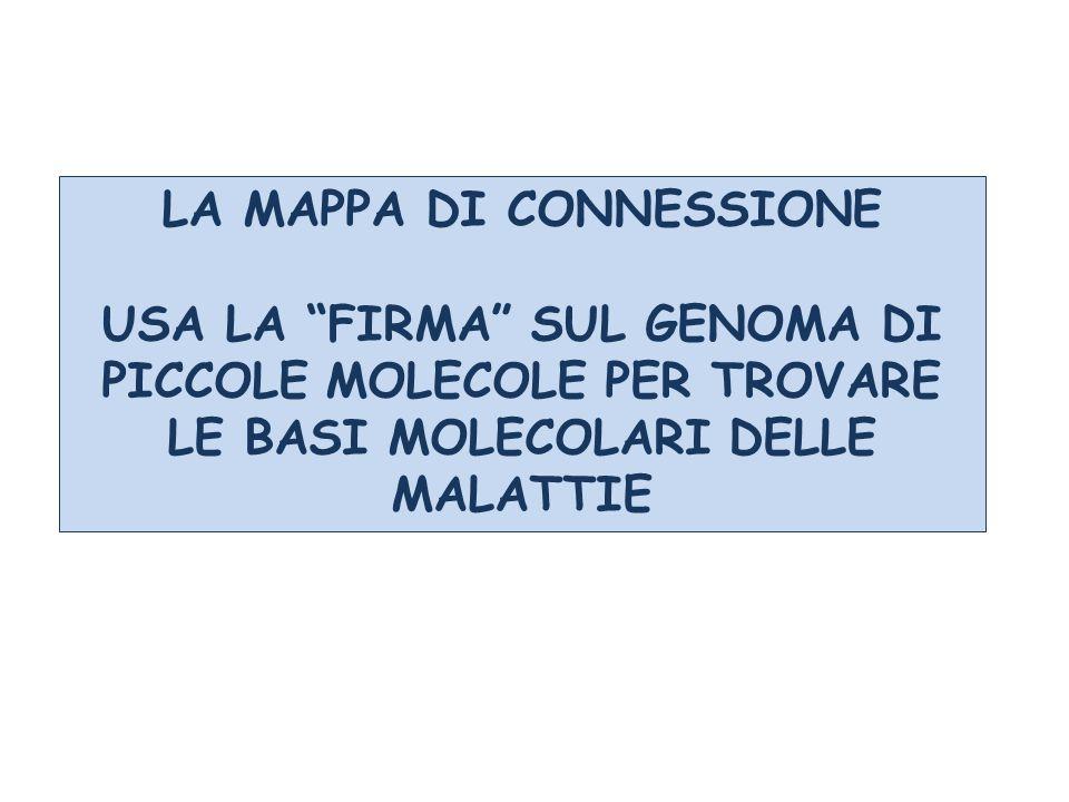 """LA MAPPA DI CONNESSIONE USA LA """"FIRMA"""" SUL GENOMA DI PICCOLE MOLECOLE PER TROVARE LE BASI MOLECOLARI DELLE MALATTIE"""