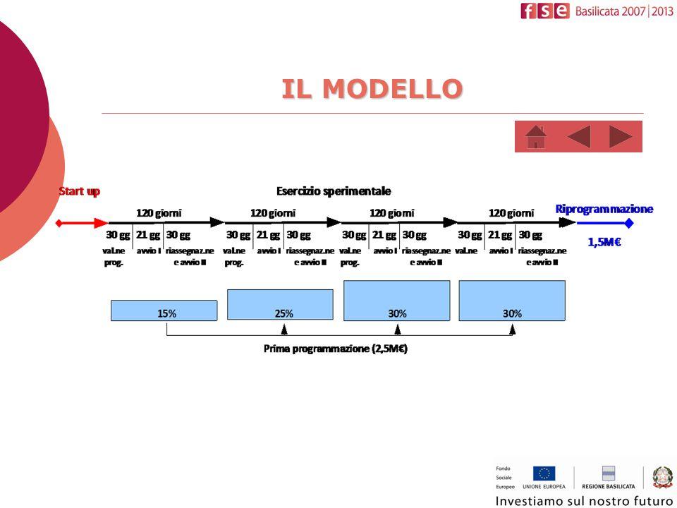 IL MODELLO (2)