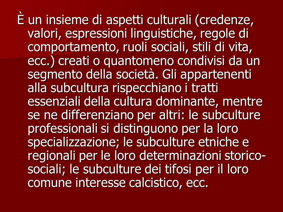 È un insieme di aspetti culturali (credenze, valori, espressioni linguistiche, regole di comportamento, ruoli sociali, stili di vita, ecc.) creati o q