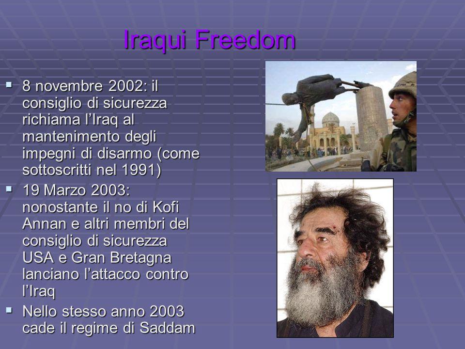 Iraqui Freedom  8 novembre 2002: il consiglio di sicurezza richiama l'Iraq al mantenimento degli impegni di disarmo (come sottoscritti nel 1991)  19