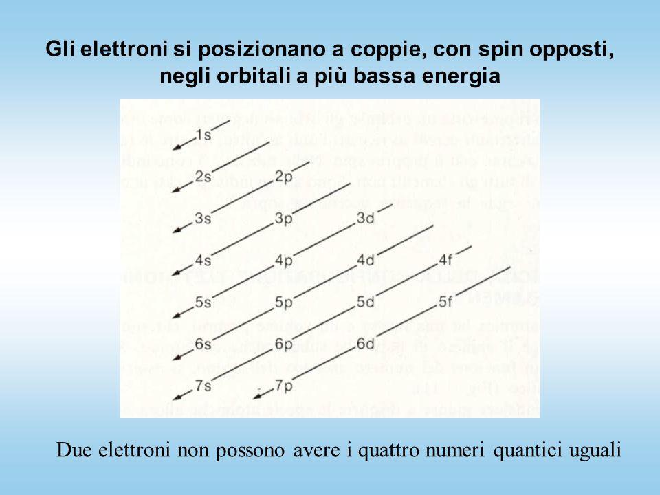 Gli elettroni si posizionano a coppie, con spin opposti, negli orbitali a più bassa energia Due elettroni non possono avere i quattro numeri quantici uguali