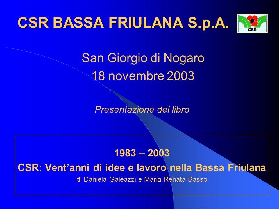 PROGRAMMA  INTRODUZIONE Benito Ottomeni Presidente del CSR Bassa Friulana S.p.A.