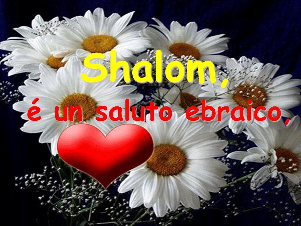 Shalom mi disse. Comprendendo sul mio volto la sorpresa per il saluto per me nuovo,mi spiegó: