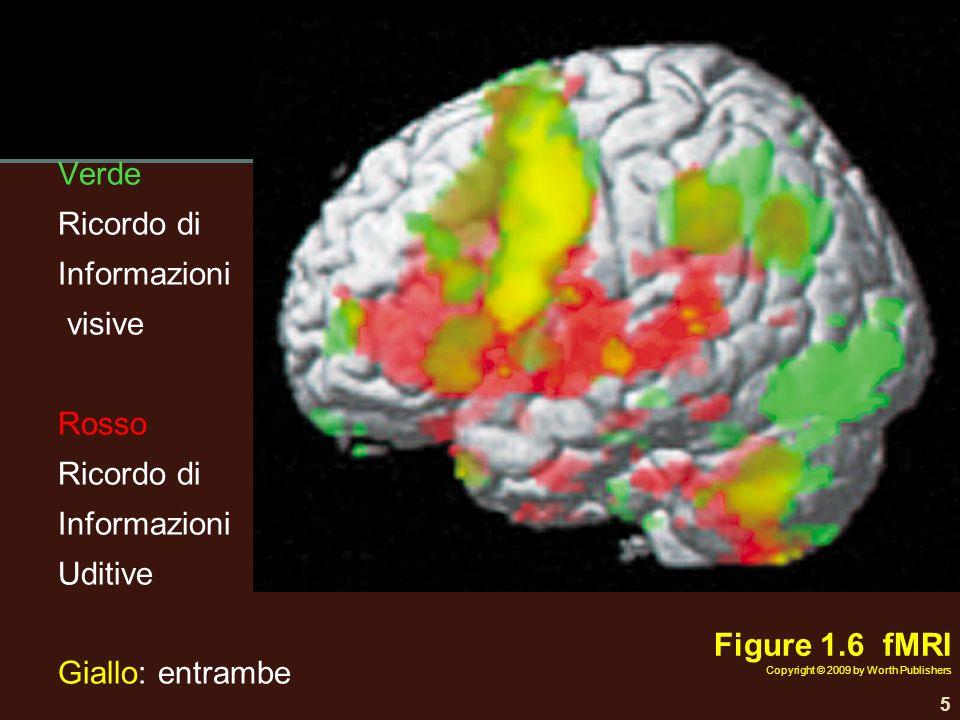 Verde Ricordo di Informazioni visive Rosso Ricordo di Informazioni Uditive Giallo: entrambe 5 Figure 1.6 fMRI Copyright © 2009 by Worth Publishers