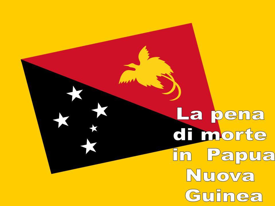 Omicidio Stupro Abusi sessuali Violenza Uso di armi pericolose Omicidio per stregoneria Rapina Corruzione Brutalità della polizia Mala gestione delle istituzioni scolastiche Sebbene la Papua Nuova Guinea prevedeva la pena di morte per legge, non ha eseguito condanne a morte dal 1954