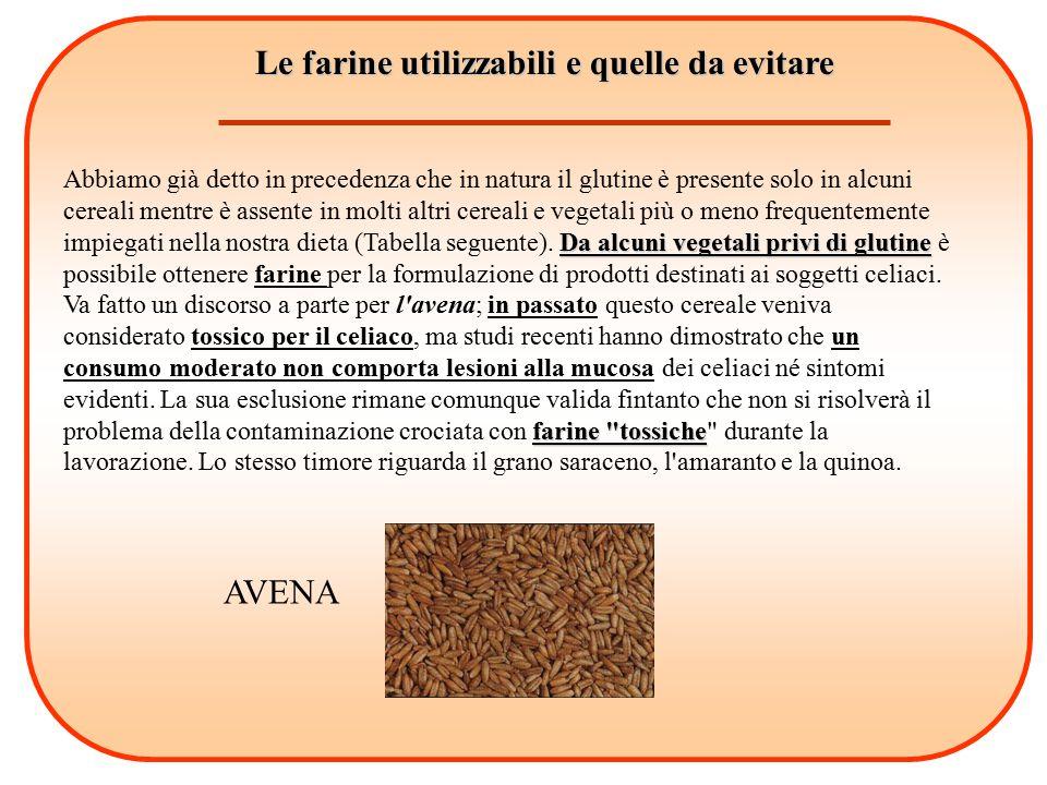 Le farine utilizzabili e quelle da evitare Da alcuni vegetali privi di glutine farine