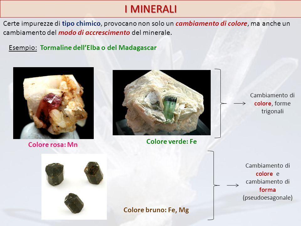 I MINERALI Certe impurezze di tipo chimico, provocano non solo un cambiamento di colore, ma anche un cambiamento del modo di accrescimento del mineral
