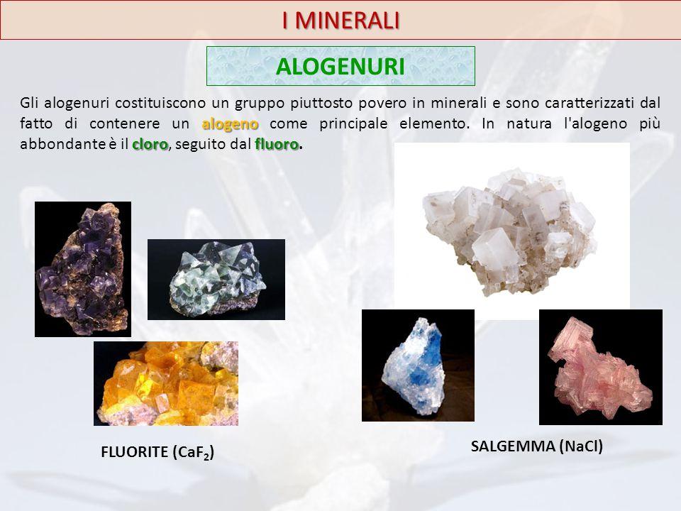 I MINERALI ALOGENURI alogeno clorofluoro Gli alogenuri costituiscono un gruppo piuttosto povero in minerali e sono caratterizzati dal fatto di contene