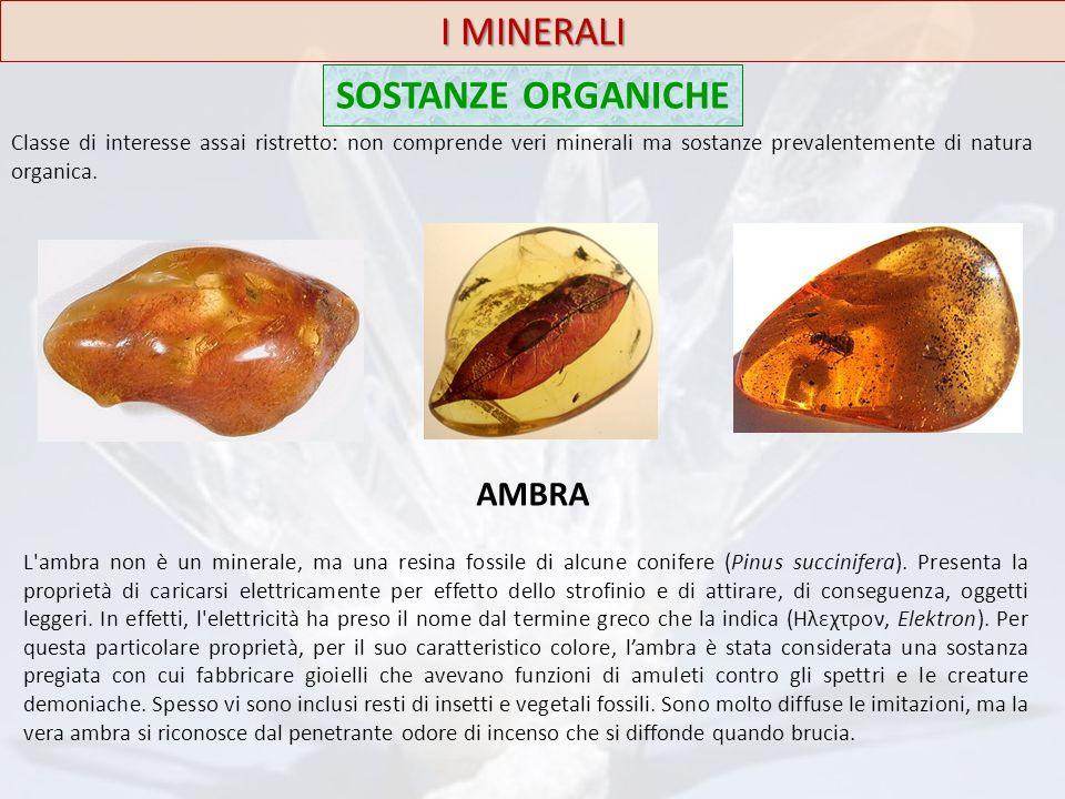 I MINERALI SOSTANZE ORGANICHE Classe di interesse assai ristretto: non comprende veri minerali ma sostanze prevalentemente di natura organica. AMBRA L