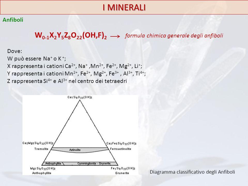I MINERALI Anfiboli W 0-1 X 2 Y 5 Z 8 O 22 (OH,F) 2 formula chimica generale degli anfiboli Dove: W può essere Na + o K + ; X rappresenta i cationi Ca