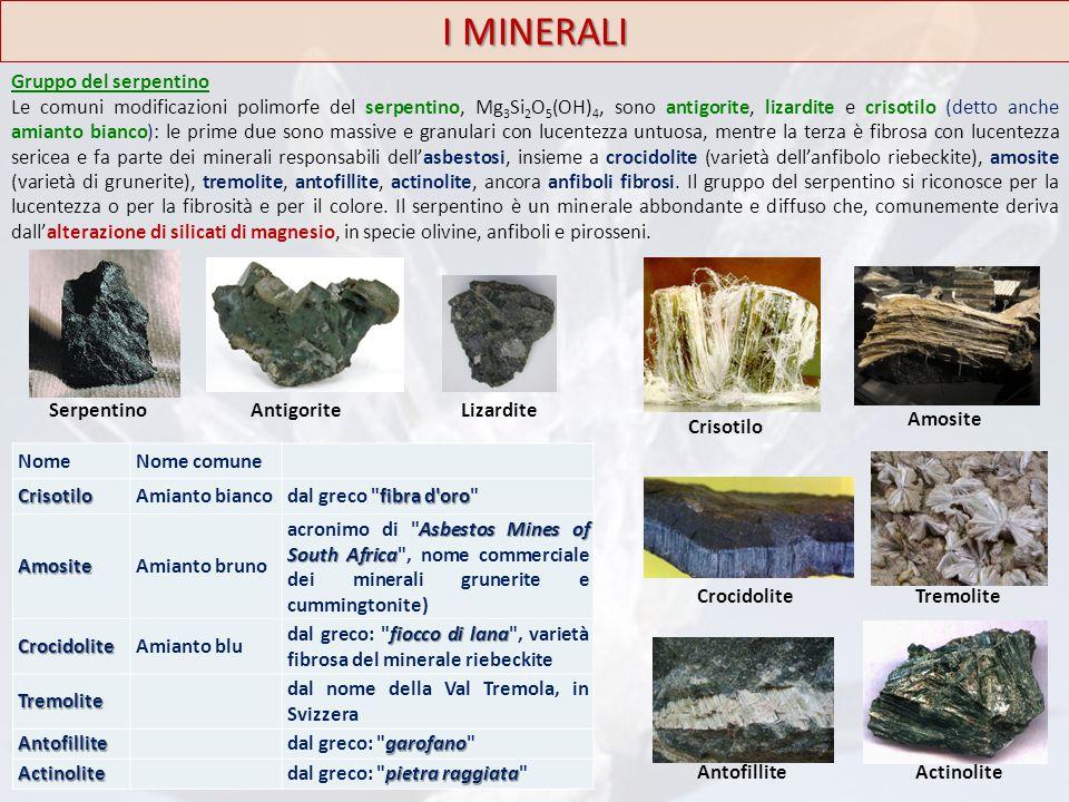 Gruppo del serpentino Le comuni modificazioni polimorfe del serpentino, Mg 3 Si 2 O 5 (OH) 4, sono antigorite, lizardite e crisotilo (detto anche amia