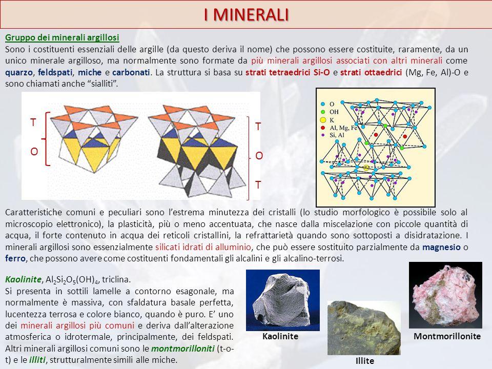 Gruppo dei minerali argillosi Sono i costituenti essenziali delle argille (da questo deriva il nome) che possono essere costituite, raramente, da un u