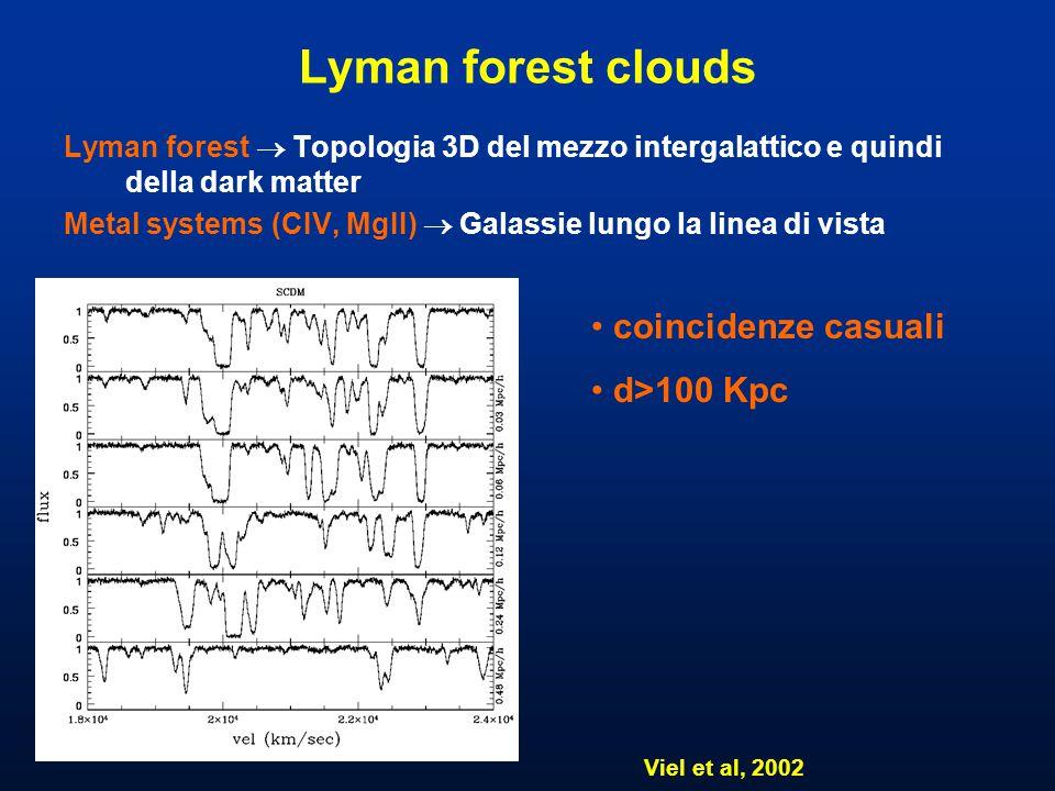 Lyman forest clouds Lyman forest  Topologia 3D del mezzo intergalattico e quindi della dark matter Metal systems (CIV, MgII)  Galassie lungo la linea di vista Viel et al, 2002 coincidenze casuali d>100 Kpc
