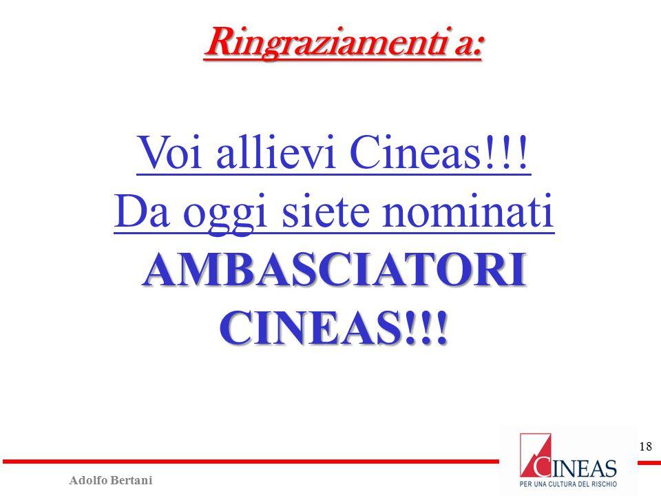 Adolfo Bertani 17 Ringraziamenti a:  Donne e uomini Cineas  Soci  Docenti  E soprattutto a…………….