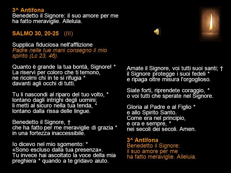 2^ Antifona Fa' splendere il tuo volto sul tuo servo, Signore. Alleluia. SALMO 30, 10-17 (II) Supplica fiduciosa nell'afflizione Padre nelle tue mani