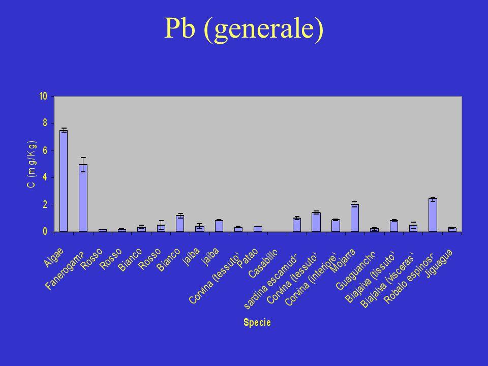Pb (generale)