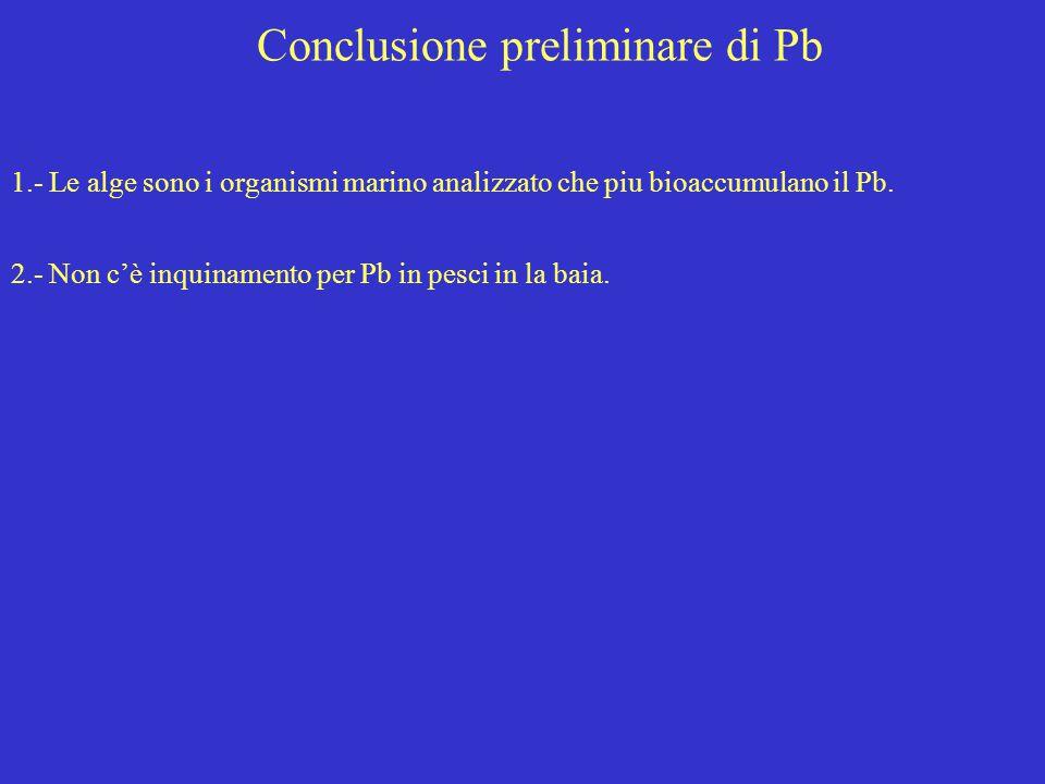 Conclusione preliminare di Pb 1.- Le alge sono i organismi marino analizzato che piu bioaccumulano il Pb. 2.- Non c'è inquinamento per Pb in pesci in