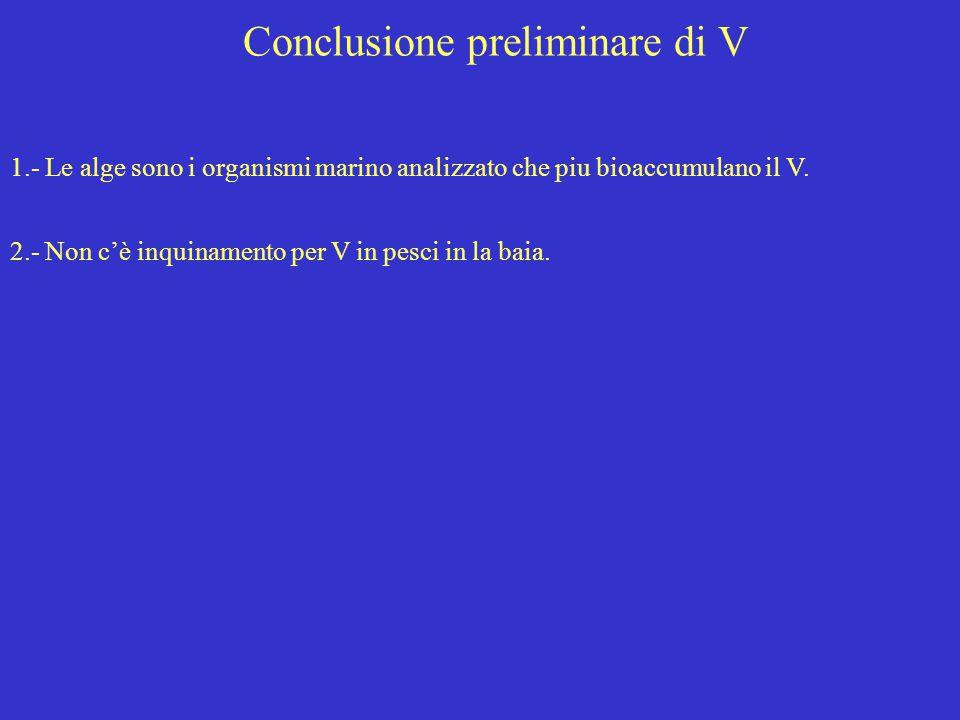 Conclusione preliminare di V 1.- Le alge sono i organismi marino analizzato che piu bioaccumulano il V. 2.- Non c'è inquinamento per V in pesci in la