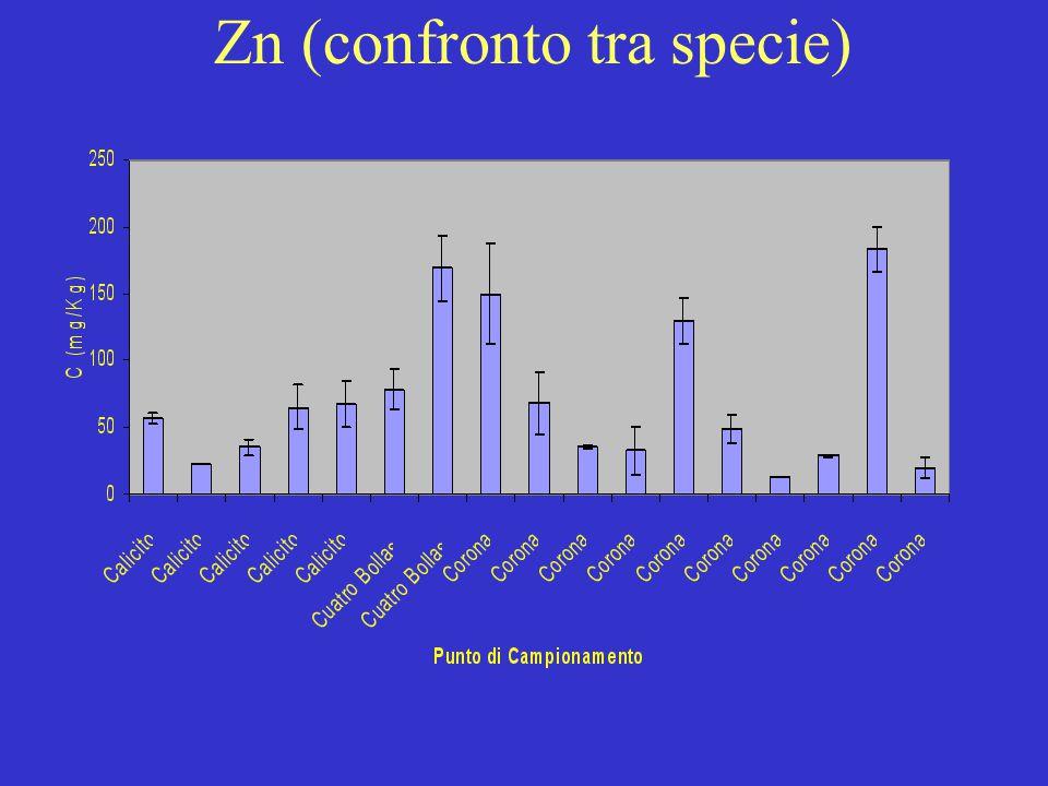 Zn (confronto tra specie)