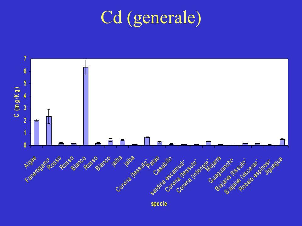 Cd (generale)