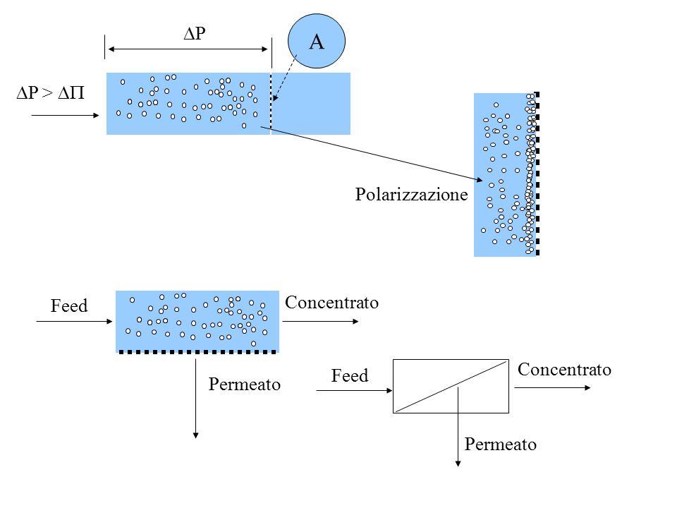  P >  PP A Permeato Concentrato Feed Permeato Polarizzazione Concentrato