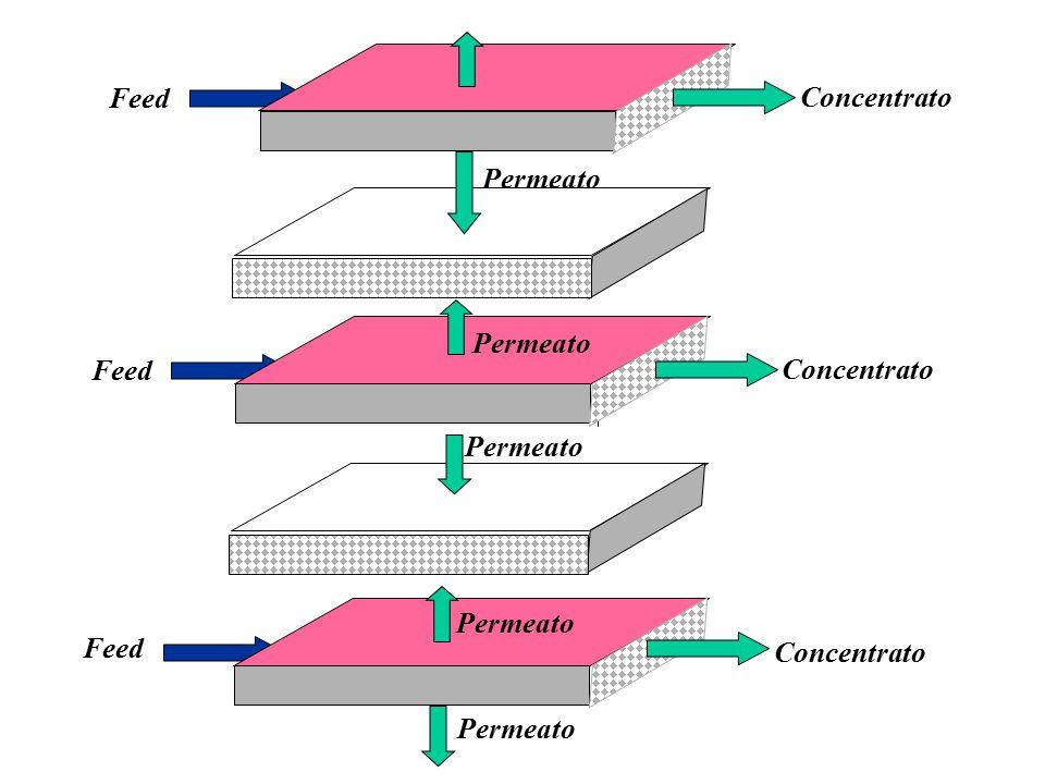 Concentrato Feed Permeato Feed Concentrato Feed Permeato Concentrato Permeato