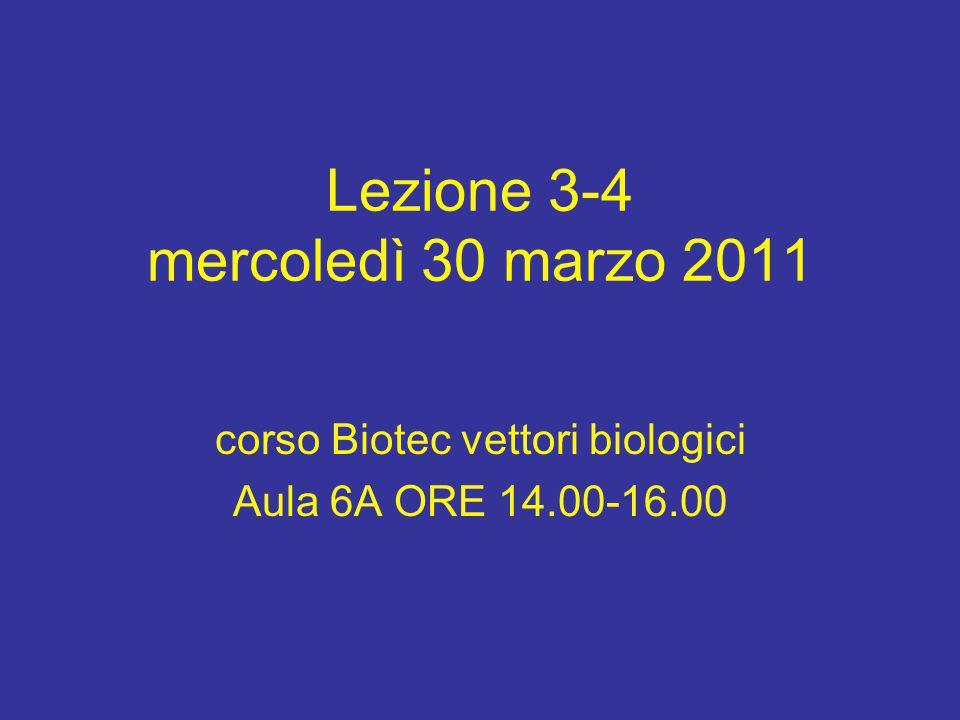 Lezione 3-4 mercoledì 30 marzo 2011 corso Biotec vettori biologici Aula 6A ORE 14.00-16.00