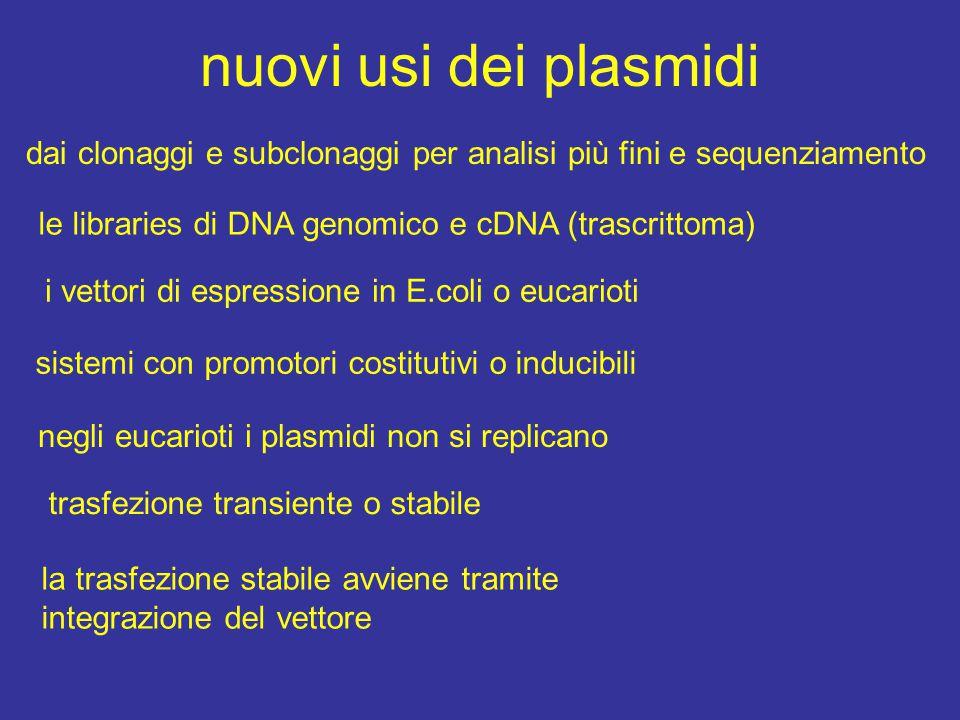 nuovi usi dei plasmidi dai clonaggi e subclonaggi per analisi più fini e sequenziamento le libraries di DNA genomico e cDNA (trascrittoma) i vettori di espressione in E.coli o eucarioti sistemi con promotori costitutivi o inducibili negli eucarioti i plasmidi non si replicano trasfezione transiente o stabile la trasfezione stabile avviene tramite integrazione del vettore