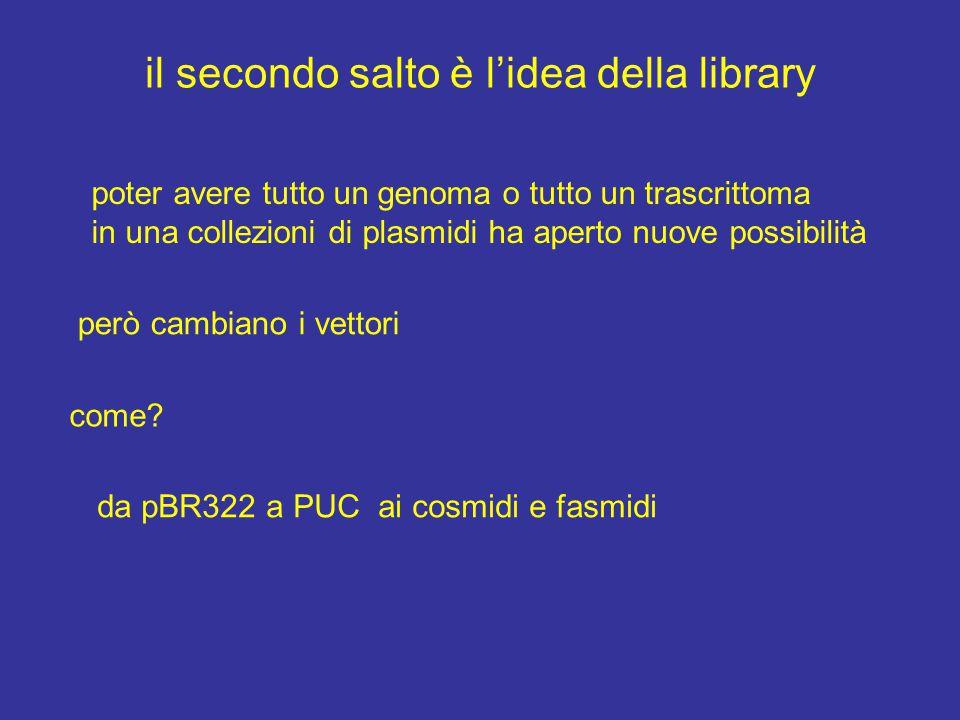 il secondo salto è l'idea della library poter avere tutto un genoma o tutto un trascrittoma in una collezioni di plasmidi ha aperto nuove possibilità però cambiano i vettori come.