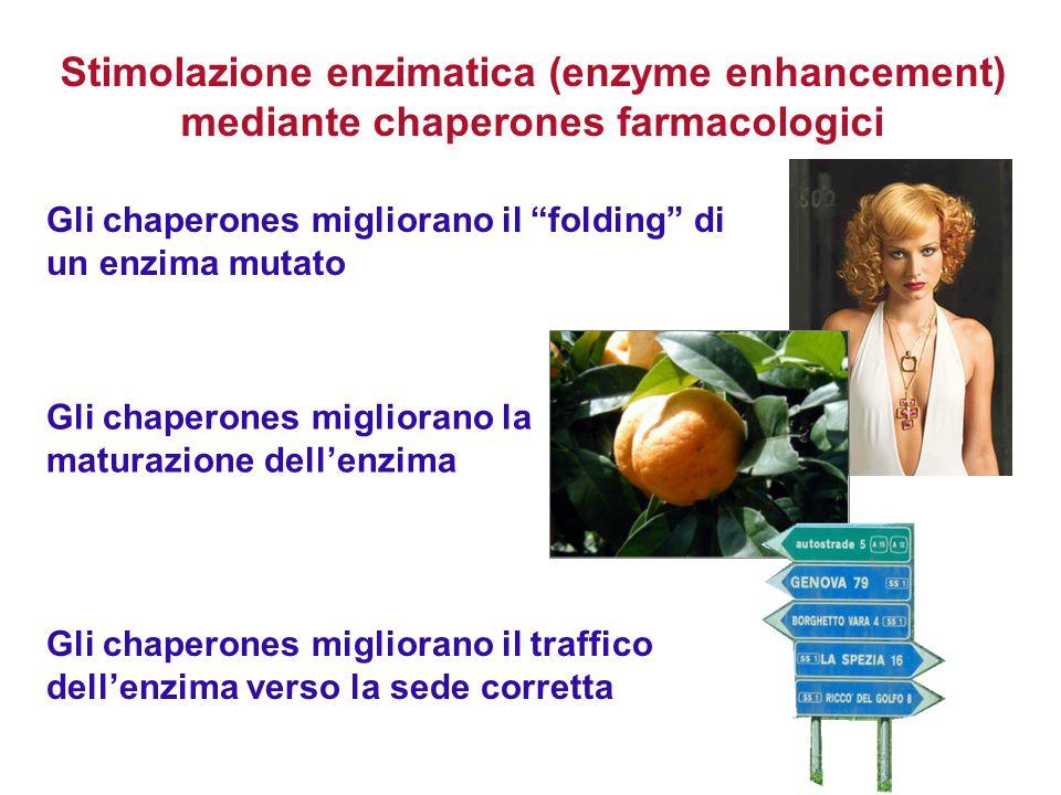"""Stimolazione enzimatica (enzyme enhancement) mediante chaperones farmacologici Gli chaperones migliorano il """"folding"""" di un enzima mutato Gli chaperon"""