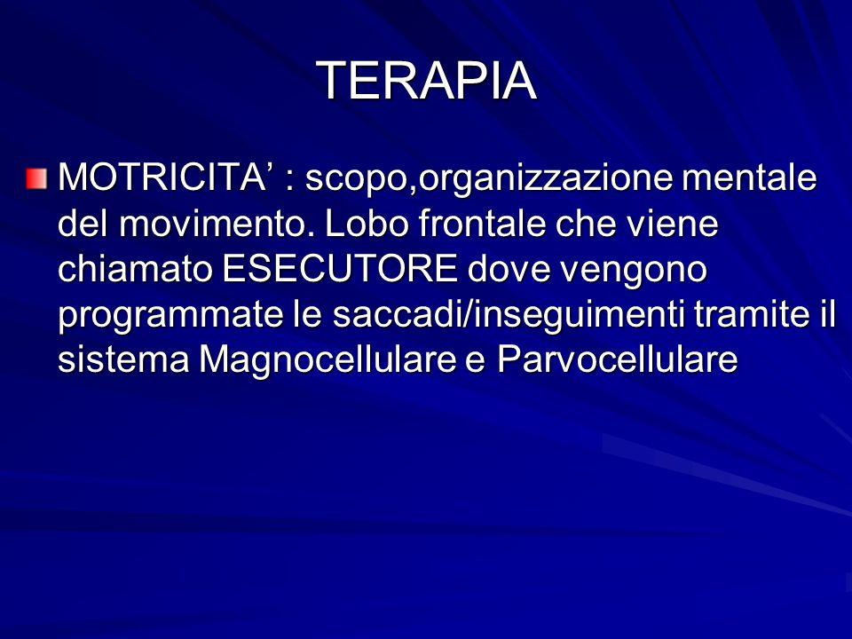 TERAPIA MOTRICITA' : scopo,organizzazione mentale del movimento. Lobo frontale che viene chiamato ESECUTORE dove vengono programmate le saccadi/insegu