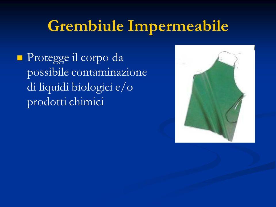 Grembiule Impermeabile Protegge il corpo da possibile contaminazione di liquidi biologici e/o prodotti chimici