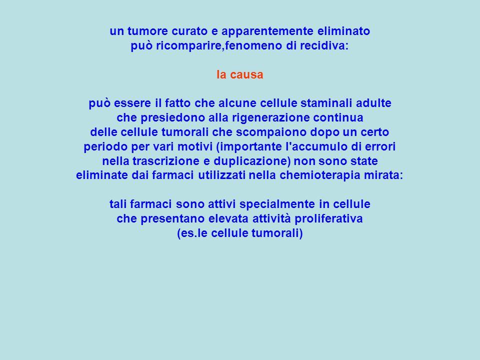 un tumore curato e apparentemente eliminato può ricomparire,fenomeno di recidiva: la causa può essere il fatto che alcune cellule staminali adulte che