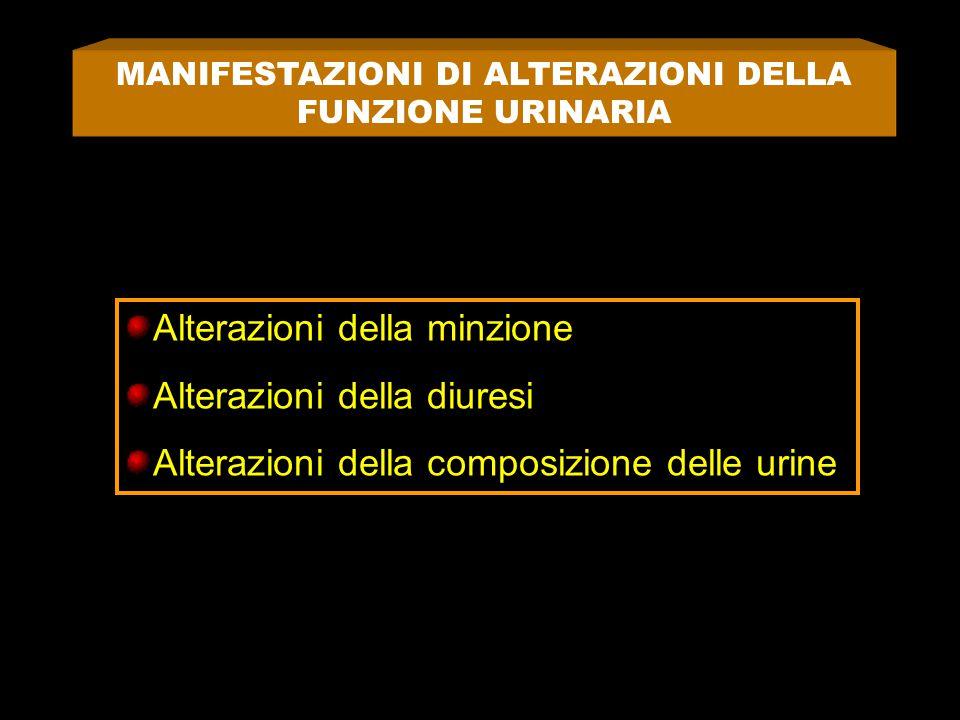 MANIFESTAZIONI DI ALTERAZIONI DELLA FUNZIONE URINARIA Alterazioni della minzione Alterazioni della diuresi Alterazioni della composizione delle urine