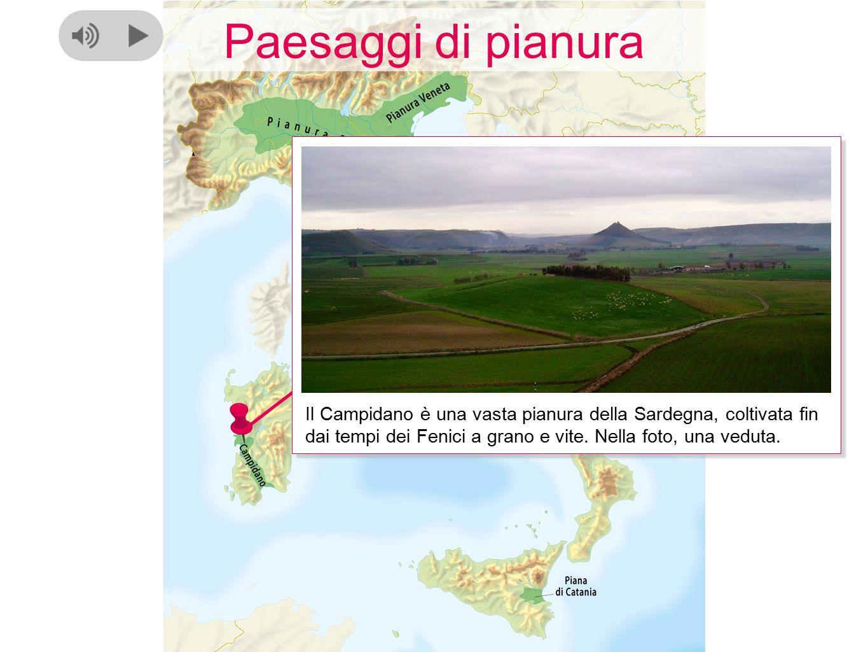 Paesaggi di pianura Il Campidano è una vasta pianura della Sardegna, coltivata fin dai tempi dei Fenici a grano e vite. Nella foto, una veduta.