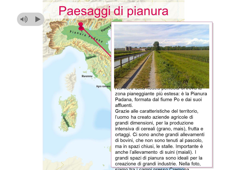 Nel nord della nostra penisola si trova la zona pianeggiante più estesa: è la Pianura Padana, formata dal fiume Po e dai suoi affluenti. Grazie alle c