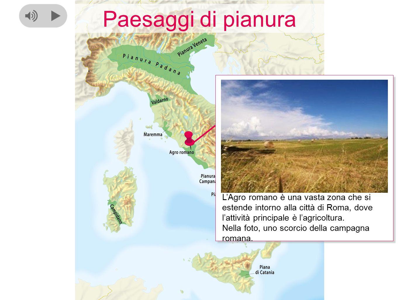 Paesaggi di pianura L'Agro romano è una vasta zona che si estende intorno alla città di Roma, dove l'attività principale è l'agricoltura. Nella foto,