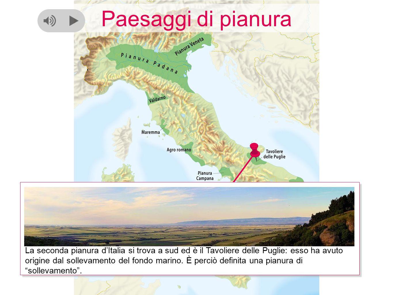 Paesaggi di pianura La seconda pianura d'Italia si trova a sud ed è il Tavoliere delle Puglie: esso ha avuto origine dal sollevamento del fondo marino