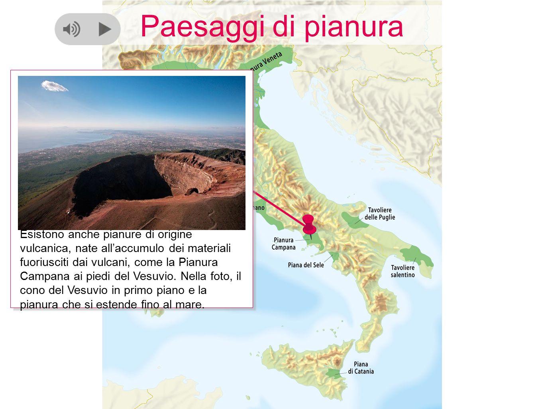 Paesaggi di pianura Esistono anche pianure di origine vulcanica, nate all'accumulo dei materiali fuoriusciti dai vulcani, come la Pianura Campana ai p