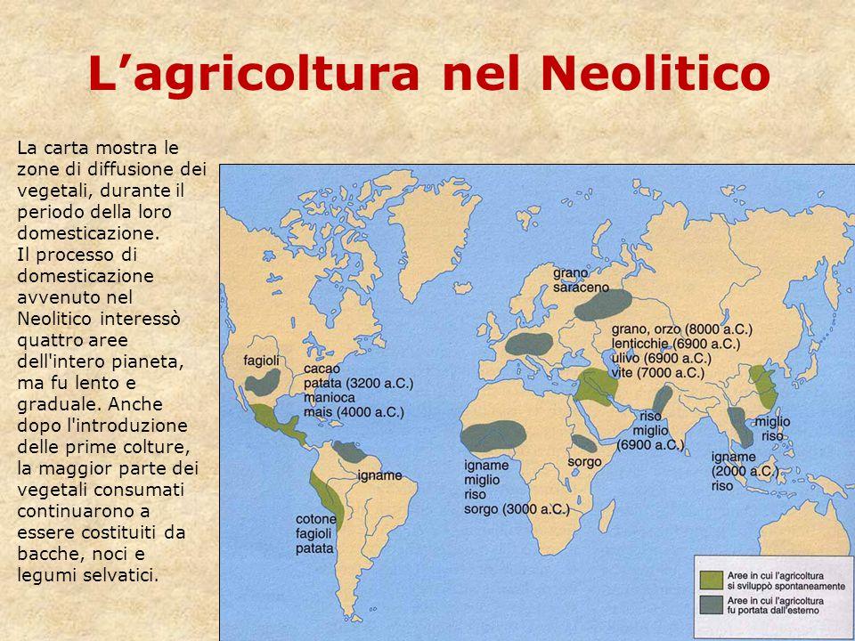 L'agricoltura nel Neolitico La carta mostra le zone di diffusione dei vegetali, durante il periodo della loro domesticazione. Il processo di domestica