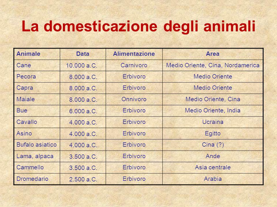 La domesticazione degli animali AnimaleDataAlimentazioneArea Cane 10.000 a.C. CarnivoroMedio Oriente, Cina, Nordamerica Pecora 8.000 a.C. ErbivoroMedi