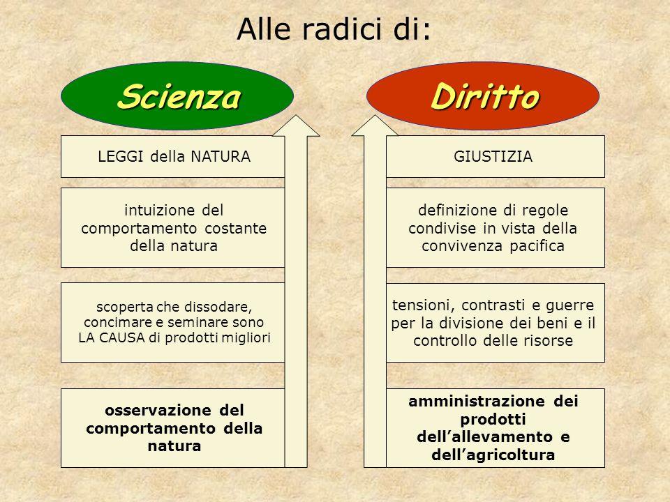 Alle radici di: osservazione del comportamento della natura scoperta che dissodare, concimare e seminare sono LA CAUSA di prodotti migliori amministra