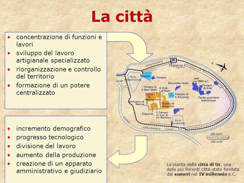 La città concentrazione di funzioni e lavori sviluppo del lavoro artigianale specializzato riorganizzazione e controllo del territorio formazione di u